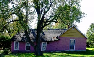 Why Isn't My Pretty Purple House Selling?